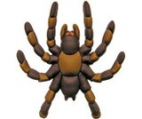 A product thumbnail of  3D Tarantula