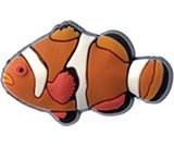A product thumbnail of  Clownfish - Orange &amp; White