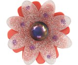 A product thumbnail of  Garden Daisy - Pulse